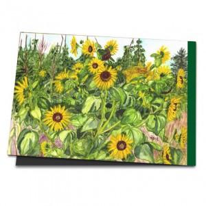 /668-853-thickbox/sonnenblumen-hinterm-dorf.jpg